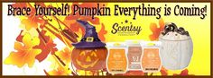 http://rclemency.scentsy.us  Place your order today!!