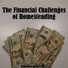 The Financial Challenges of Modern Day Homesteading