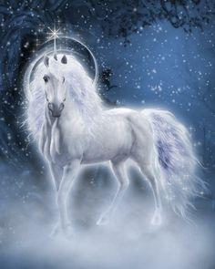 Discover thousands of images about Unicorn Fantasy Myth Mythical Mystical Legend Licorne Enchantment Unicorn And Fairies, Unicorn Fantasy, Unicorn Horse, Unicorns And Mermaids, White Unicorn, Unicorn Art, Unicorn Poster, Beautiful Unicorn, Beautiful Horses