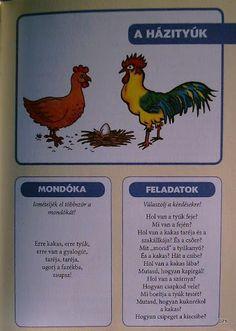 Deákné B. Nature Study, Preschool, Album, Teaching, Animals, Picasa, Animais, Preschools, Animales
