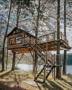 Image may contain: tree, sky and outdoor via Beautiful Tree Houses, Cool Tree Houses, Swiss Family Robinson Treehouse, Tiny House Big Living, Tree House Plans, Tiny House Nation, Tree House Designs, Cabin In The Woods, Survival