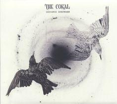 The_Coral_-_Distance_Inbetween