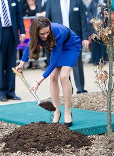Catherine, Duchess of Cambridge plants a tree as she officially opens The Treehouse Children's Hospice on March 2012 in Ipswich, England. Kate Middleton Shoes, Princess Kate Middleton, Duchess Kate, Duchess Of Cambridge, British Army Uniform, Emma Watson Sexiest, Great Legs, Sexy Heels, British Royals