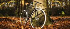 Wooden handlebar fixed gear fixie by Wootbikes