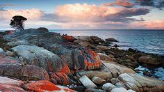 Bay of Fires - tasmania | Tumblr