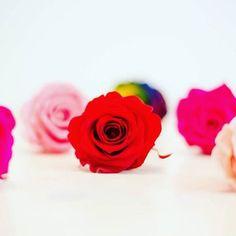 Mieux vaut tard que jamais Avec le code PLUSPOURMAMAN 15% de réduction sur FLEURS ÉTERNELLES http://www.artifleurs-fleurs-artificielles.com/