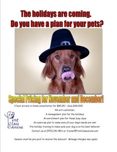 Do you have a holiday plan for your pets?  Do you know how you will manage their needs with holiday needs?  We can help.  Special for November and December only.  Contact us today at trainer@firstclasscanine.com Behavior Modification, Dog Training, Your Pet, November, Exercise, How To Plan, Pets, Holiday, November Born