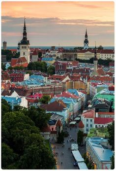Da vedere a Tallinn - Cosa vedere a Tallinn