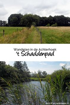 Holland, Backpacking, Camping, Walkabout, Staycation, Weekender, Biking, Netherlands, Paths