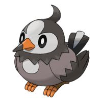 Starly Black And White Bird Pokemon Image Vector And Clipart With For Your Design. You can get million PNG images to search your favorites object for the project template.