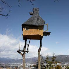 Casa de madeira em cima da árvore 4