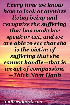Thich Nhat Hanh: seeing that another is the victim of suffering is an act of compassion.
