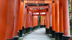 Fushimi Inari Shrine, Kyoto Japan 2014