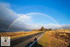 Saddle Road, Hawaii  photo by Yuko Ishikawa