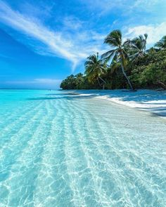 The most detailed travel guide about the Maldives for every budget! Learn everything about the Maldives and plan your the best vacation! Vacation Destinations, Dream Vacations, Vacation Spots, Vacation Images, All Inclusive Vacations, Cruise Vacation, Amazing Destinations, Beautiful Islands, Beautiful Beaches