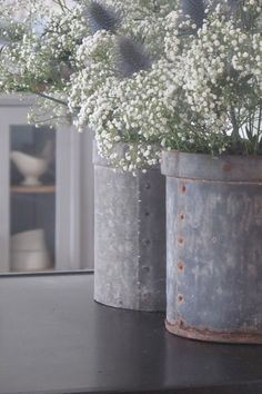♅ Dove Gray Home Decor ♅ baby's breath in vintage containers Galvanized Decor, Galvanized Buckets, Galvanized Metal, White Flowers, Beautiful Flowers, Faux Flowers, Pot Jardin, Flower Meanings, Gris Rose