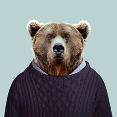 Grizzly Bear / Zoo Portraits - Yago PARTAL