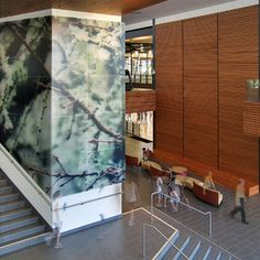 3form HighRes used to decorate walls of the Wildcat recreation Center.