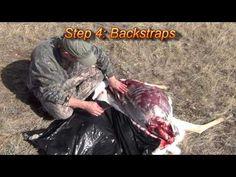 Quartering and de-boning wild game (Gutless Method) - YouTube
