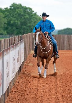 Downunder Horsemanship | Training Tip of the Week: Don't ignore a spooky object