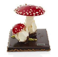 Gâteau au chocolat et ses champignons de meringue