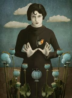 Poppies Lady - Surrealism Photograph Collage by Daria Petrilli Art Works, Art Painting, Surrealist, Surreal Art, Illustration, Painting, Surrealism, Art, Collage Art