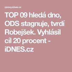 TOP 09 hledá dno, ODS stagnuje, tvrdí Robejšek. Vyhlásil cíl 20 procent - iDNES.cz