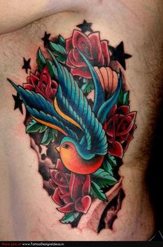 Picture Swallow Bird Tattoos Design Idea
