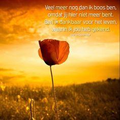 Veel meer nog dan ik boos ben, omdat jij hier niet meer bent. Ben ik dankbaar voor het leven, waarin ik jou heb gekend. www.dichtgedachten.nl