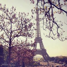 SWEET CHARM: Torre Eiffel