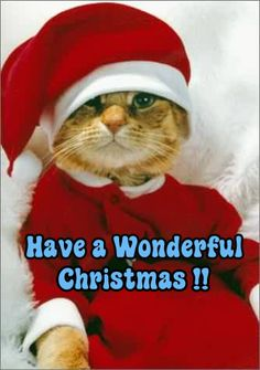 Art By Wendy Merry Christmas Christmas Animals Christmas Scenes Christmas Cats