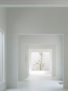 Francine Gardner - Art de Vivre: Life in White...