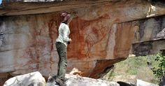 Rock art recently found on a shelter wall in Northern Australia displays a large bird resembling Geyornis, an emu-like megafauna that supposedly disappeared from Australia 40,000 years ago. If the painting is in fact a depiction of Geyornis and if the bird in fact went extinct when researchers say it did, then this painting is the oldest rock art in the world, predating Chauvet cave in France by 7,000 years. Currently, the earliest dated pigment in Australia is 28,000 years BP.