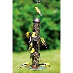 """Songbird Essentials 17"""""""" Copper Spiral Sunflower Bird Feeder"""