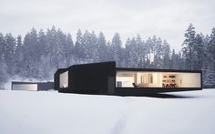 Look at that window! We love the elongated design of this winter home.