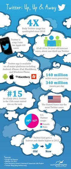 Algunos datos de Twitter en este 2012