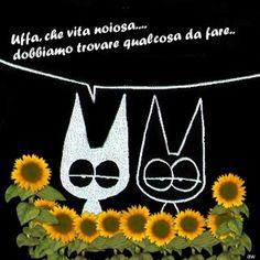 http://www.articoliinvendita.net/acquadellavita/la-mia-vita-e-noiosa/#more-296