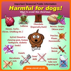 Harmful for dogs!