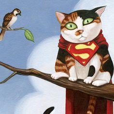 Super gato!
