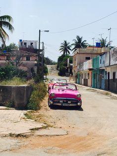 A pink beauty in Cojimar, near Havana, Cuba.