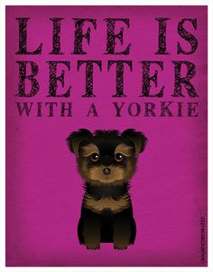 Life+is+Better+with+a+Yorkie+Art+Print+11x14++by+DogsIncorporated,+