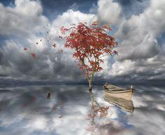 Sogni... by marco.cacciatore1