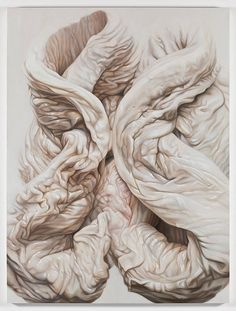 Victoria Reynolds' oil paintings and drawings of raw meat deconstruct the idea of preparing flesh for the purpose of consumption. The meats stop being pieces of meat and become biological masse...