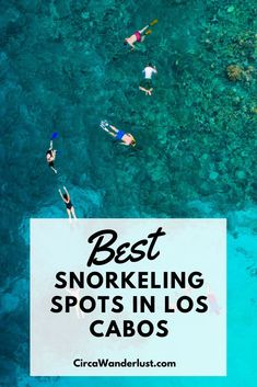 Spots for SCUBA and Snorkeling in Los Cabos - CircaWanderlust Mexico Vacation, Mexico Travel, Vacation Spots, Vacation Ideas, Mexico Destinations, Top Destinations, Cabo San Lucas Mexico, Best Snorkeling, Adventure Travel