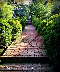 Henhurst - Dumbarton Oaks walk in Washington, DC