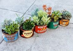 Plant succulents in vintage coffee cans. I have one of these vintage tins in the modernpoetry shop right now. Cacti And Succulents, Planting Succulents, Planting Flowers, Succulent Ideas, Succulent Pots, Vintage Tins, Vintage Coffee, Vintage Theme, Upcycled Vintage
