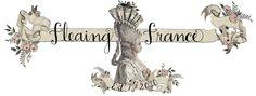 FleaingFrance
