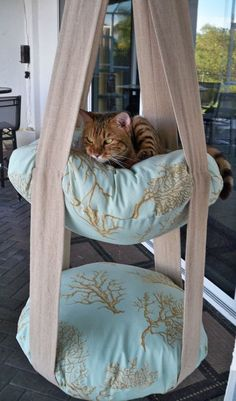 Nice 21 DIY Ideas How to Make a Perfect Living Space for Pets https://pinarchitecture.com/21-diy-ideas-how-to-make-a-perfect-living-space-for-pets/ #cattoys