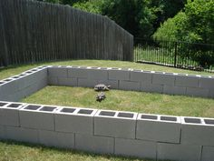 This is a beautiful outdoor box turtle habitat using a raised bed for a garden. Description from pinterest.com. I searched for this on bing.com/images