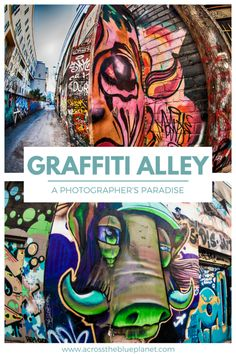Graffiti Alley: A Photographer's Paradise Outdoor Photography, Graffiti, Street Art, Paradise, Wildlife, Artist, Blog, Travel, Voyage